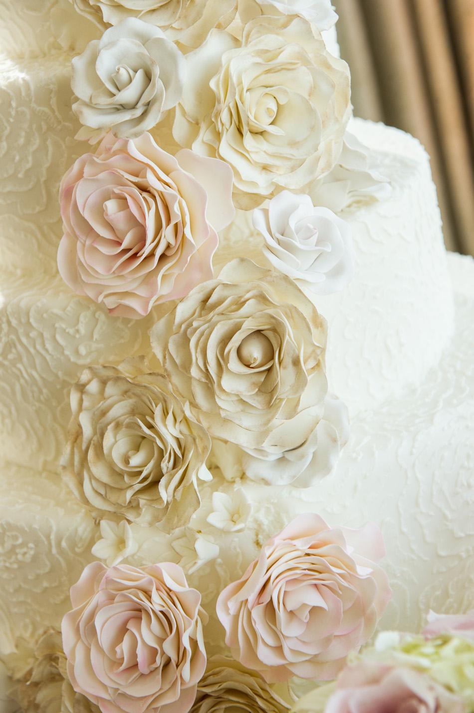 FreedPhotography_DC Wedding_029