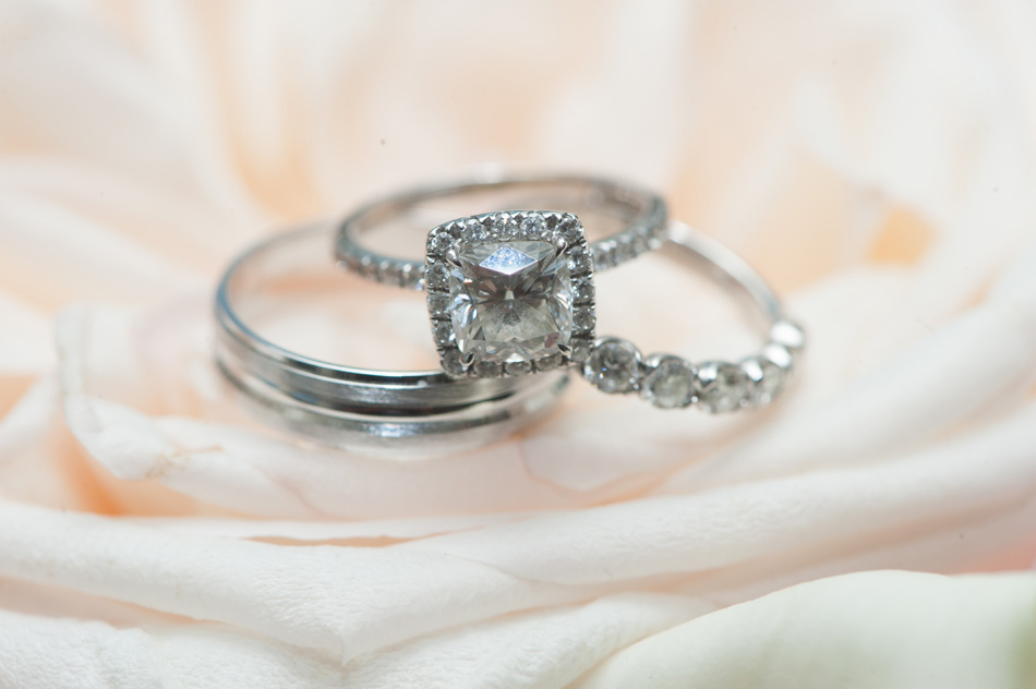 FreedPhotography_DC Wedding_042